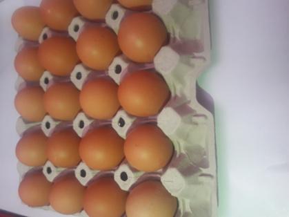 Huevos frescos de tamaño XL