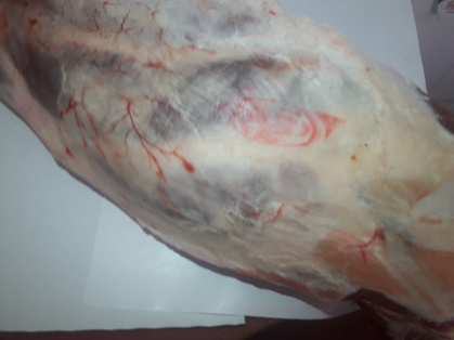 Carne Granada