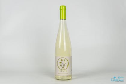 Vino de Aguja Vinícola del Carmen - Varios